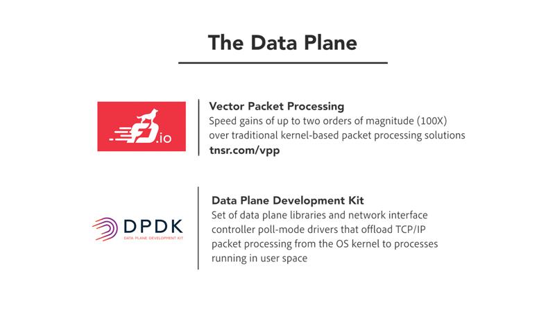 The Data Plane