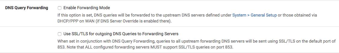 DNS Forwarding Options