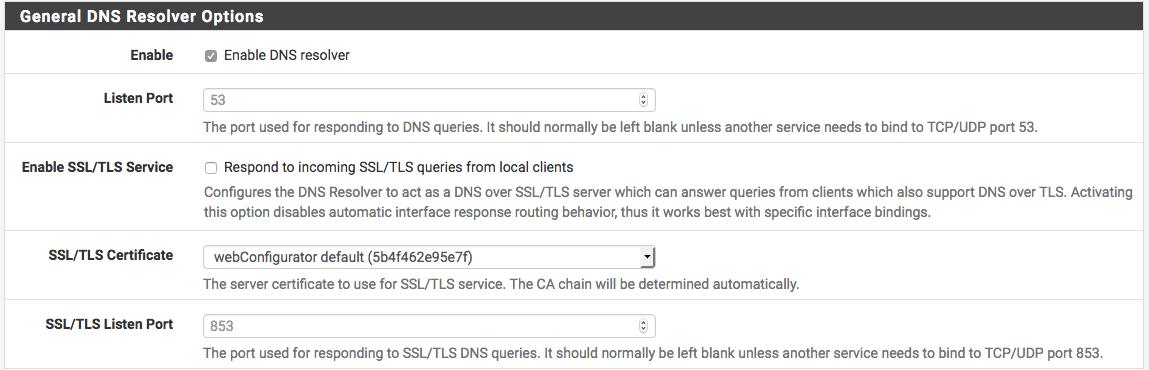 DNS Resolver Options