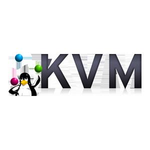 TNSR-KVM